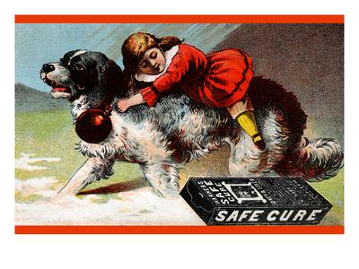 Warner's Safe Cure Poster