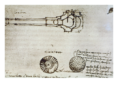 Leonardo Da Vinci Premium Giclee Print by  Leonardo da Vinci