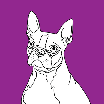 Boston Terrier Prints by Anna Nyberg