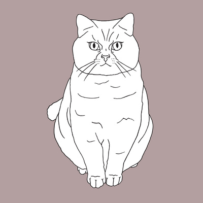 Fat Angry Cat Prints by Anna Nyberg