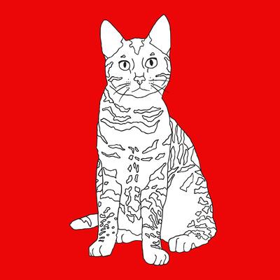 Tabby Cat Prints by Anna Nyberg