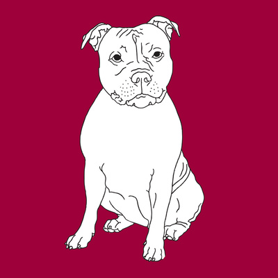Staffordshire Bull Terrier Prints by Anna Nyberg