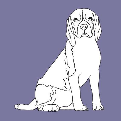 Beagle Prints by Anna Nyberg
