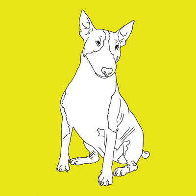 Bull Terrier Prints by Anna Nyberg