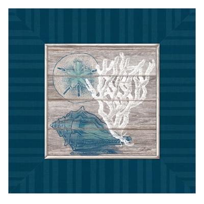 Coastal Wonders Prints by Sam Appleman