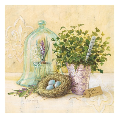 Cook's Garden Posters by Angela Staehling