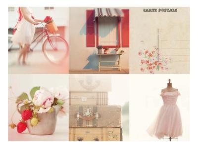 Dream in Pink Prints by Mandy Lynne