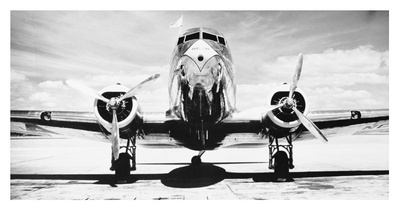 Passenger Airplane on Runway Poster by Philip Gendreau
