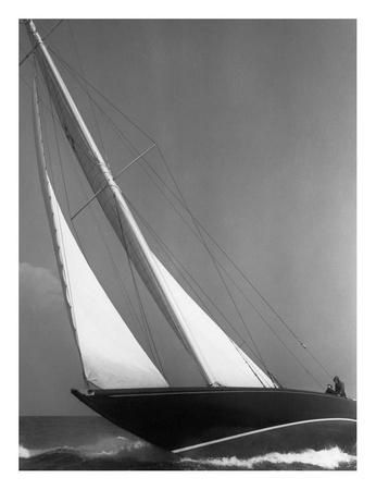 Ibis Yacht Cruising, 1936 Posters by Edwin Levick