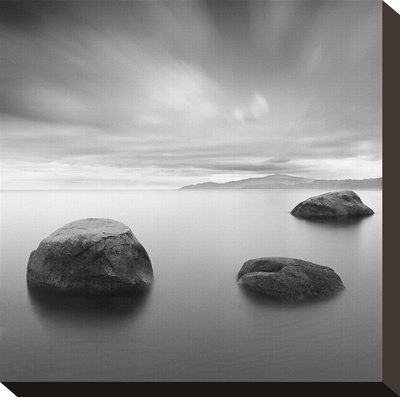 Vancouver V Stretched Canvas Print by Moises Levy
