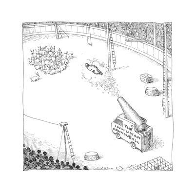 Cannon shooting a human into a heard of rabbits at the circus. - Cartoon Giclee Print by John O'brien