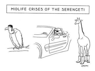 Mid-life Crises of the Serengeti - New Yorker Cartoon Giclee Print by Alex Gregory