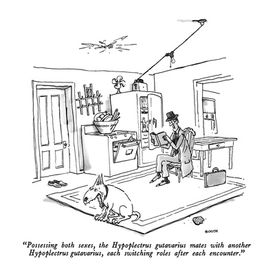 """Possessing both sexes, the Hypoplectrus gutavarius mates with another Hyp…"" - New Yorker Cartoon Giclee Print by George Booth"