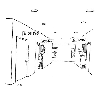 A hospital hallway with signs over the doors.  One reads 'Kidneys,' the ot… - New Yorker Cartoon Giclee Print by George Booth