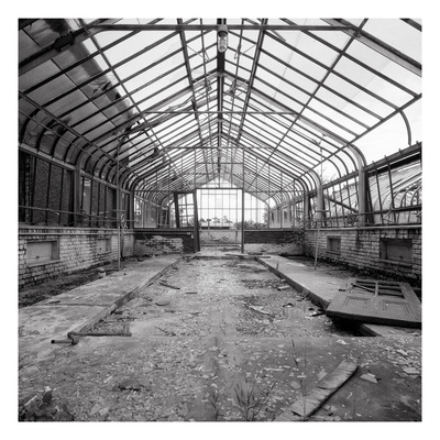 Once a Greenhouse Photographic Print by Evan Morris Cohen
