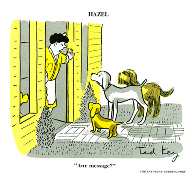 Hazel Cartoon Posters by Ted Key