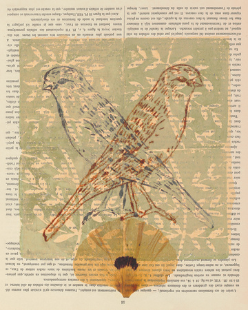 Love Birds II Poster by Meredith Macleod