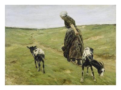 Woman with Goats on the Dunes, 1890 Gicléetryck av Max Liebermann