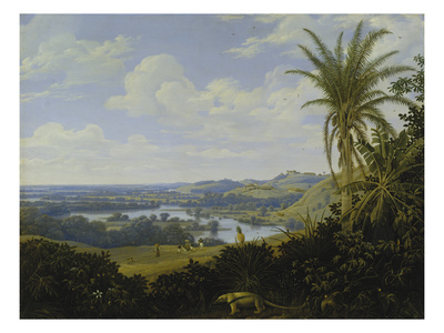 Brasilian Landscape with Anteater. Probably 1649 Giclee Print by Frans Post