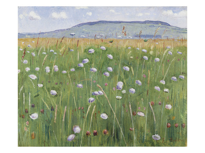 Meadow of Flowers, about 1901 Gicléetryck av Ferdinand Hodler