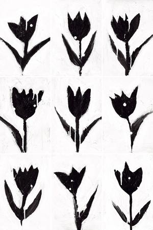 Tulip Noir Composite Prints by Lilian Scott