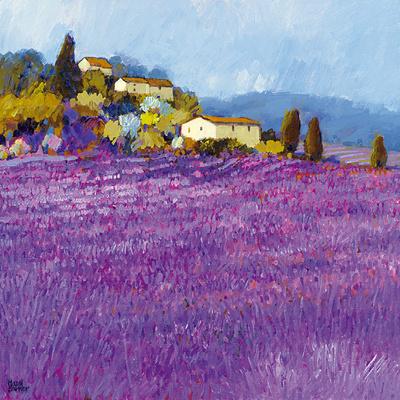 Wild Lavender, Provence Stampe di Hazel Barker