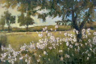 Summer Bloom Print by  Patrick