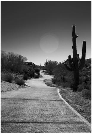 Cart Path on Desert Golf Course Arizona Prints