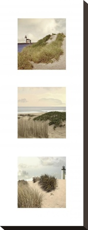Beach Trio I Stretched Canvas Print by Judy Mandolf