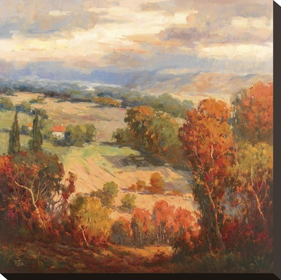 Tuscan View Stretched Canvas Print by K. Park