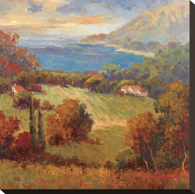 Tuscan Hill View Stretched Canvas Print by K. Park