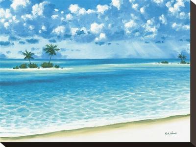 Island Keys Stretched Canvas Print by Rick Novak