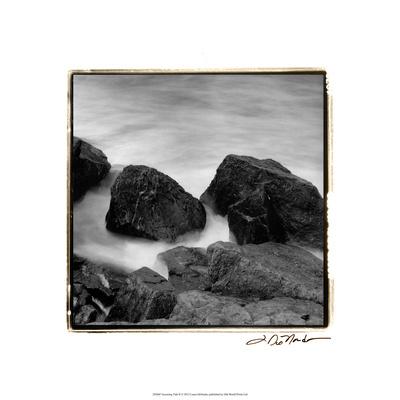 Incoming Tide II Premium Giclee Print by Laura Denardo
