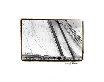 Under Sail III Premium Giclee Print by Laura Denardo