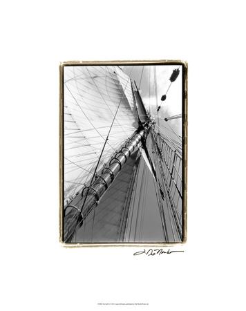 Set Sail II Premium Giclee Print by Laura Denardo