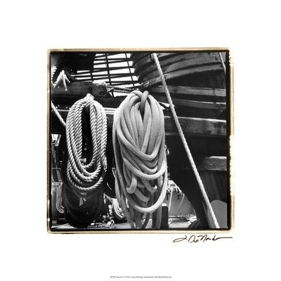 Secure IV Premium Giclee Print by Laura Denardo