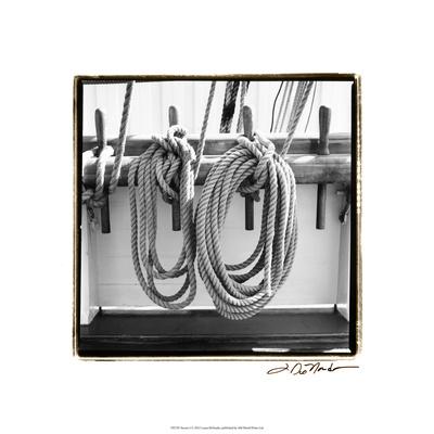 Secure I Premium Giclee Print by Laura Denardo