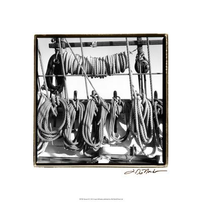 Secure II Premium Giclee Print by Laura Denardo