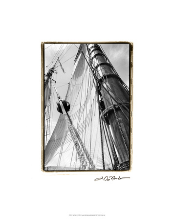 Set Sail III Premium Giclee Print by Laura Denardo