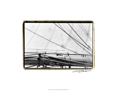 Under Sail IV Premium Giclee Print by Laura Denardo