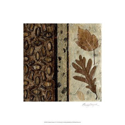 Earthen Textures VI Limited Edition by Beverly Crawford
