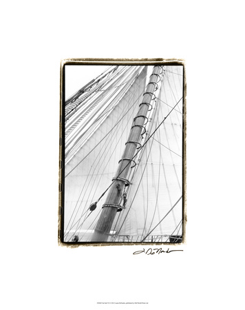 Set Sail VI Premium Giclee Print by Laura Denardo
