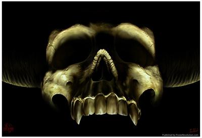 Shadow Skull Prints by Tom Wood