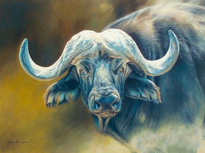 Warrior - African Cape Buffalo Giclee Print by Kim Thompson