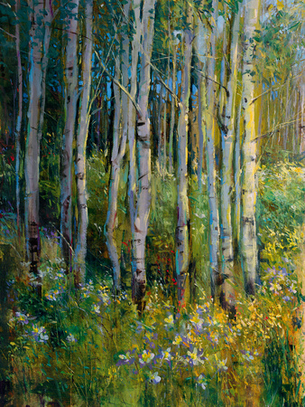 Aspens in Spring Giclee Print by  Patrick