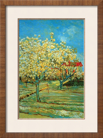 Orchard with Cypress by Van Gogh Art by Vincent van Gogh