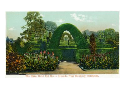 California - Hotel Del Monte View of the Maze Near Monterey Prints by  Lantern Press