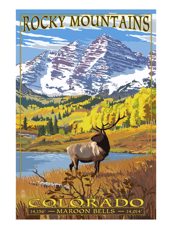 Rocky Mountains national park, moose eating in field with snow cap mountains in the background poster