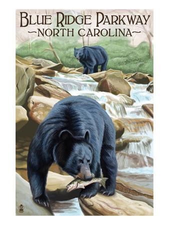 Blue Ridge Parkway, North Carolina - Black Bears Fishing Art by  Lantern Press