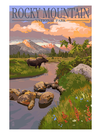 Moose and Meadow - Rocky Mountain National Park Affischer av  Lantern Press
